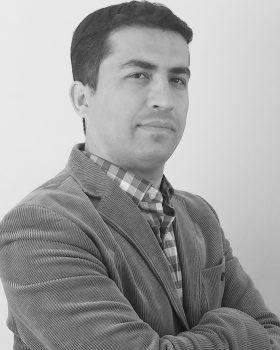 Ahmet Baki Yerli