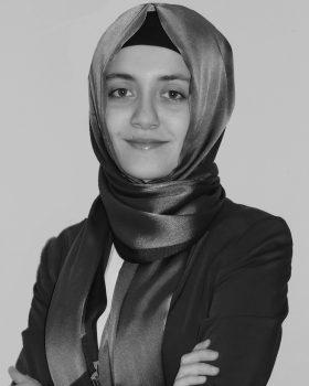 Yazar Şehri Madan
